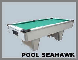 Un billard outdoor le billard Seahawk